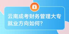 云南成考 财务管理大专就业方向如何?