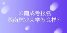 云南成考报名 西南林业大学怎么样?