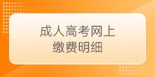2021年云南省成人高考网上缴费明细