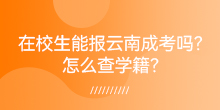 在校生能报云南成考吗?怎么查学籍?